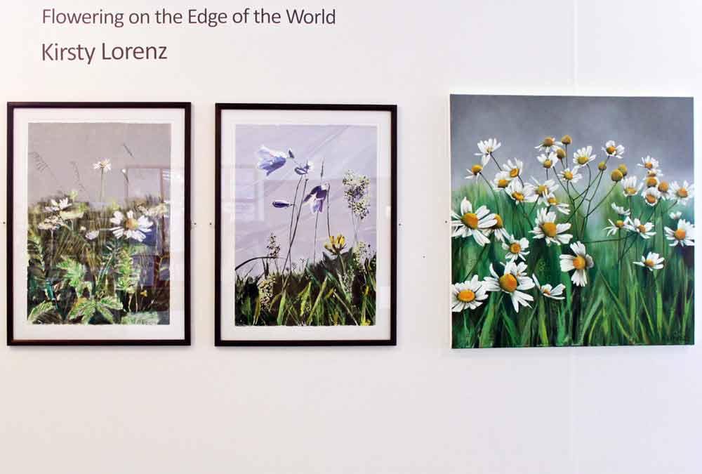 Kirsty Lorenz Exhibition Image