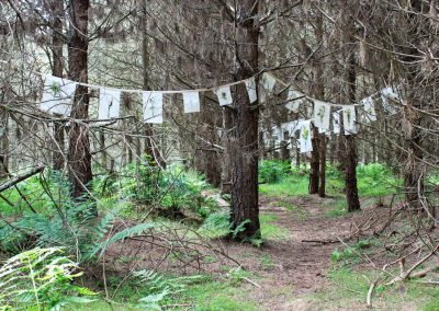 Prayer Flags in the woods