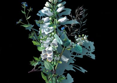 Votive Offering No 86 - White Foxglove after Mary Delany, 70x50cm