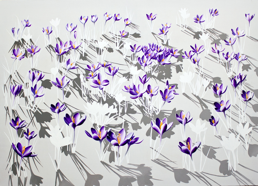 'Floresce', painting of 97 crocii by Kirsty Lorenz