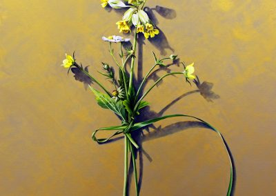 4 Votive Offering No 84 - Strawberry and Cowslip on Gold, oil on linen, 110x110cm
