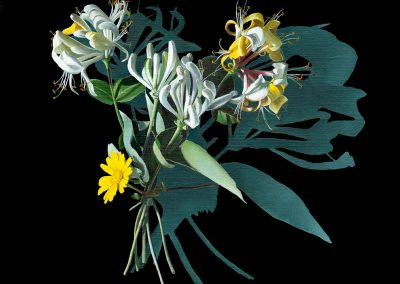 Votive Offering No 88 - Honeysuckle after Mary Delany, 30x30cm