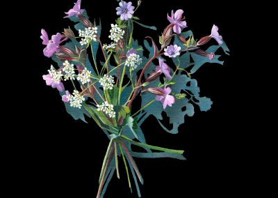 Votive Offering No 89 - Herb Robert after Mary Delany, 30x30cm