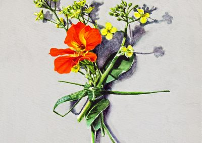 Votive Offering No.101 - Pakchoi and Nasturtium, 25x25cm
