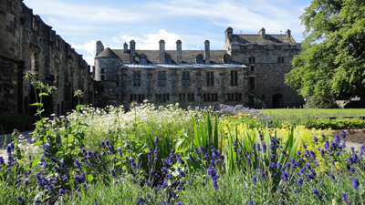 Plants, Medicine and Magic at Falkland Palace